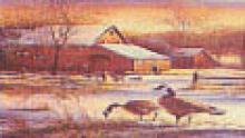 Greeting Card- Geese